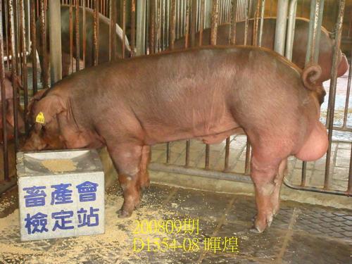 中央畜產會200809期D1554-08拍賣照片