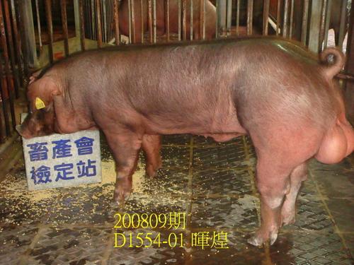 中央畜產會200809期D1554-01拍賣照片