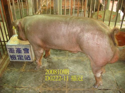 中央畜產會200810期D0222-11拍賣照片