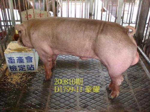 中央畜產會200810期D1799-11拍賣照片