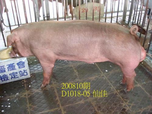 中央畜產會200810期D1018-05拍賣照片