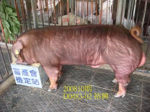 中央畜產會200810期D0483-02拍賣照片