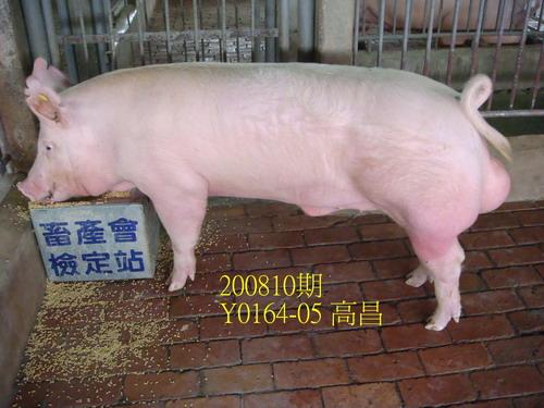 中央畜產會200810期Y0164-05拍賣照片