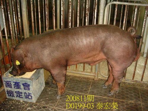 中央畜產會200811期D0199-03拍賣照片