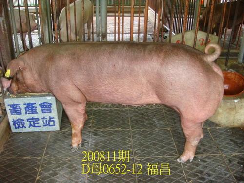 中央畜產會200811期D0652-12拍賣照片