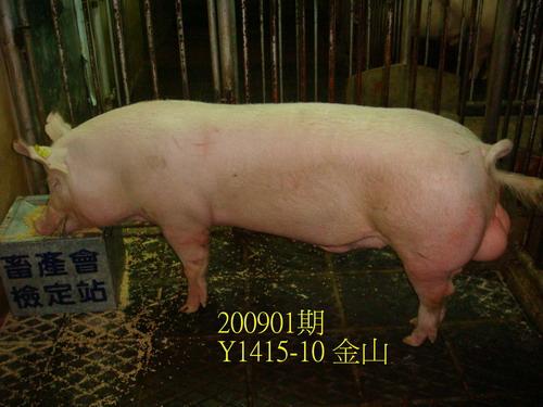 中央畜產會200901期Y1415-10拍賣照片