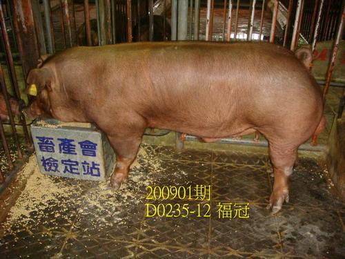 中央畜產會200901期D0235-12拍賣照片