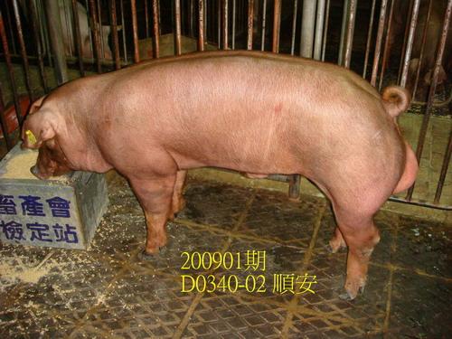 中央畜產會200901期D0340-02拍賣照片