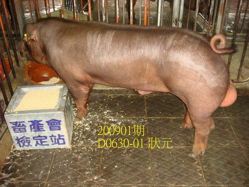 中央畜產會200901期D0630-01拍賣照片