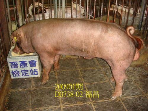 中央畜產會200901期D0738-02拍賣照片