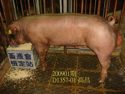 中央畜產會200901期D1357-01拍賣照片