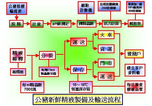 精液性狀及AI中心-公豬新鮮精液製備及輸送流程
