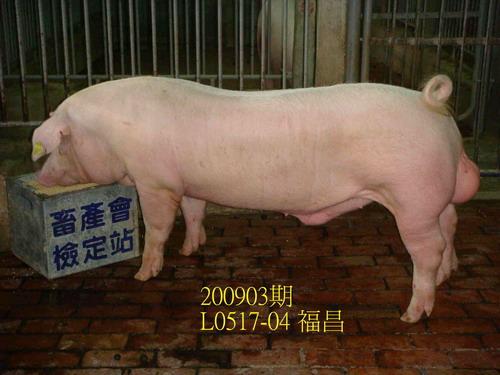 中央畜產會200903期L0517-04拍賣照片