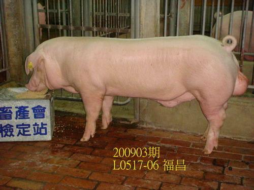 中央畜產會200903期L0517-06拍賣照片