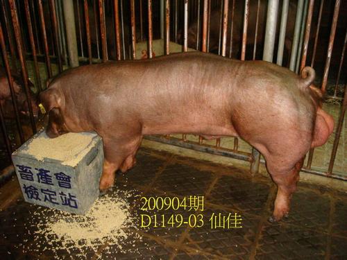 中央畜產會200904期D1149-03拍賣照片