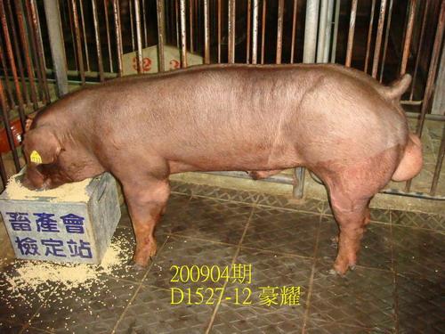 中央畜產會200904期D1527-12拍賣照片