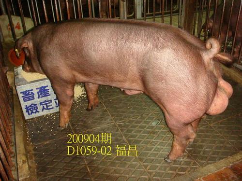 中央畜產會200904期D1059-02拍賣照片