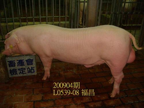 中央畜產會200904期L0539-08拍賣照片