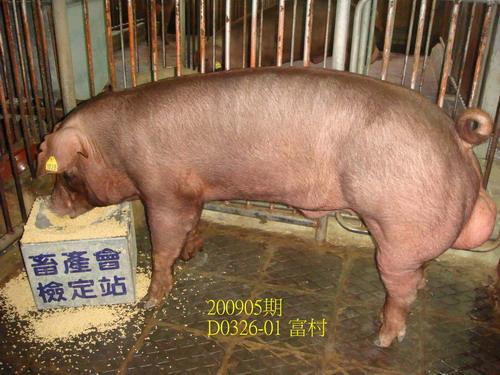 中央畜產會200905期D0326-01拍賣照片