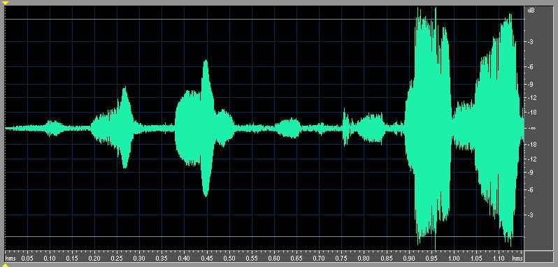種原鳴叫聲-波形圖-小雞2