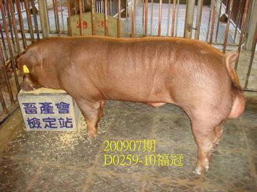 中央畜產會200907期D0259-10拍賣照片