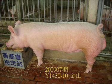 中央畜產會200907期Y1430-10拍賣照片
