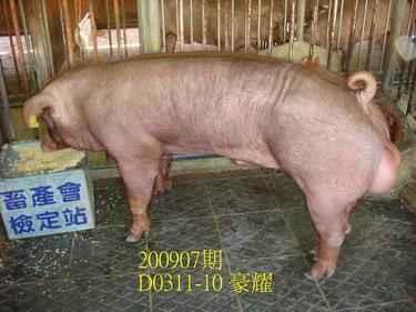 中央畜產會200907期D0311-10拍賣照片