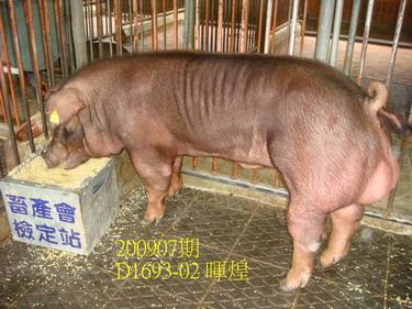 中央畜產會200907期D1693-02拍賣照片