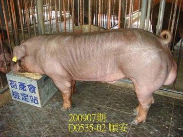中央畜產會200907期D0535-02拍賣照片