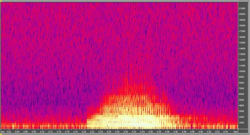 種原鳴叫聲-頻譜圖-水牛