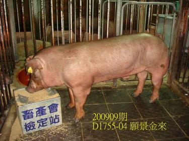 中央畜產會200909期D1755-04拍賣照片