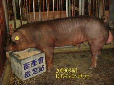 中央畜產會200909期D0793-05拍賣照片