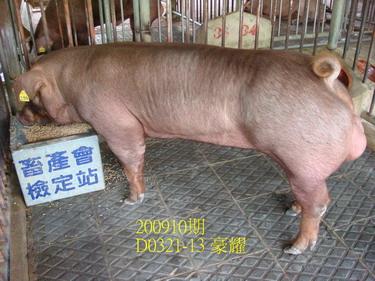 中央畜產會200910期D0321-13拍賣照片