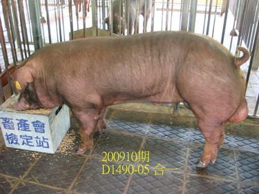 中央畜產會200910期D1490-05拍賣照片