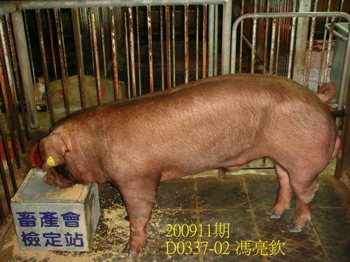 中央畜產會200911期D0337-02拍賣照片