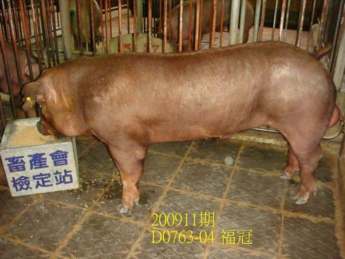 中央畜產會200911期D0763-04拍賣照片