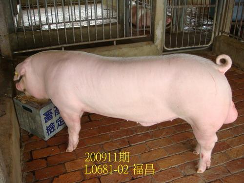 中央畜產會200911期L0681-02拍賣照片
