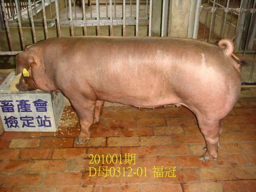 中央畜產會201001期D0312-01拍賣照片