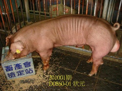 中央畜產會201001期D0860-01拍賣照片