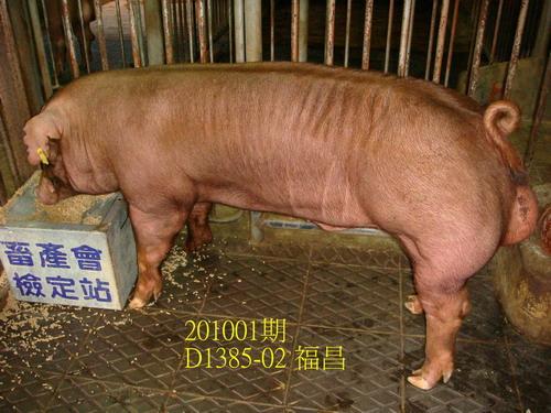 中央畜產會201001期D1385-02拍賣照片