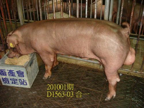 中央畜產會201001期D1563-03拍賣照片