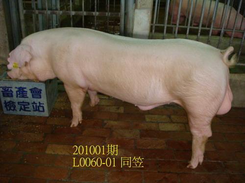 中央畜產會201001期L0060-01拍賣照片