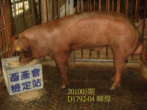 中央畜產會201003期D1792-04拍賣照片