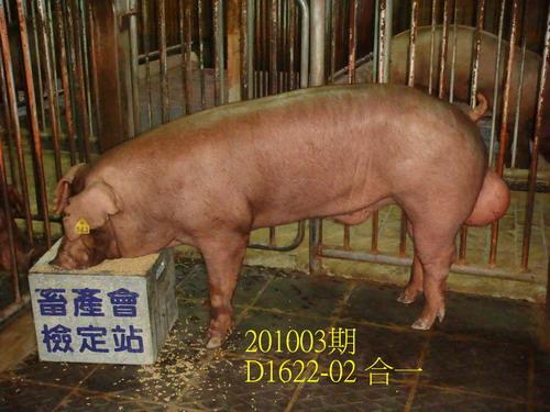 中央畜產會201003期D1622-02拍賣照片