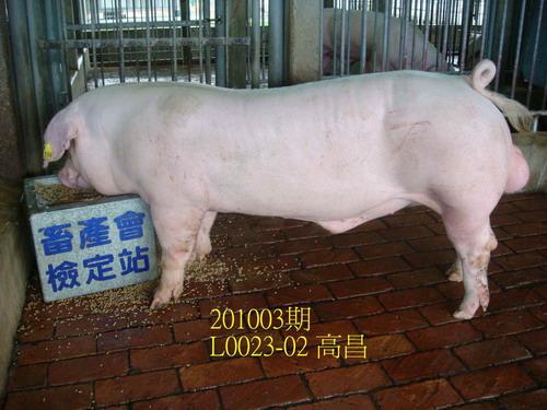中央畜產會201003期L0023-02拍賣照片