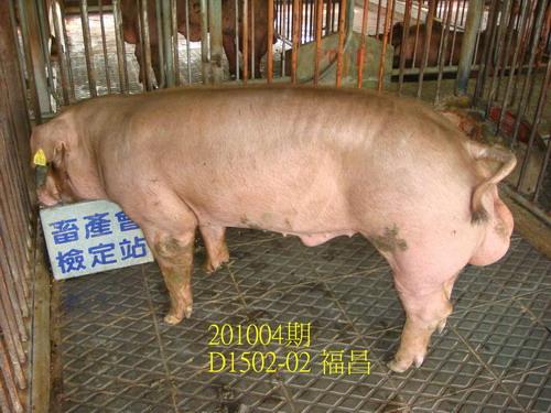 中央畜產會201004期D1502-02拍賣照片