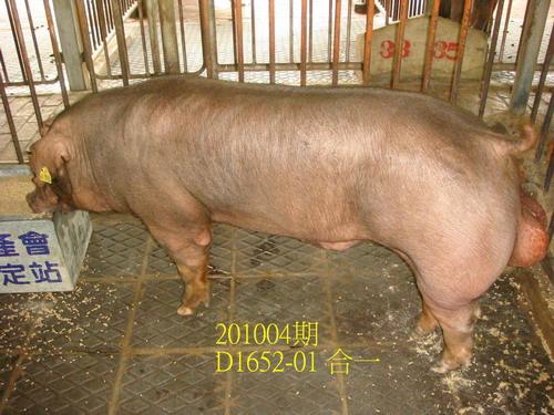 中央畜產會201004期D1652-01拍賣照片