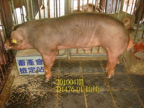 中央畜產會201004期D1476-01拍賣照片