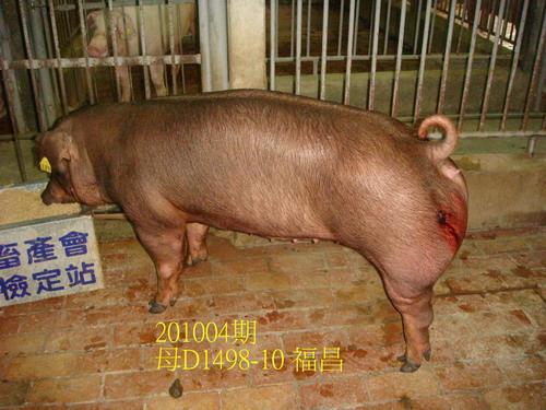 中央畜產會201004期D1498-10拍賣照片