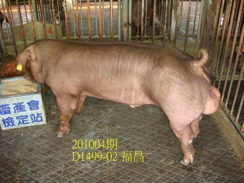 中央畜產會201004期D1499-02拍賣照片